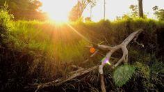 New free stock photo of landscape sunset sunrise
