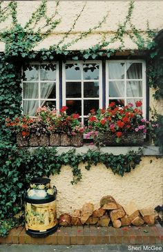 Adare, Ireland (Pretty sure I drove by this gorgeous little house... or one of the dozens like it!)