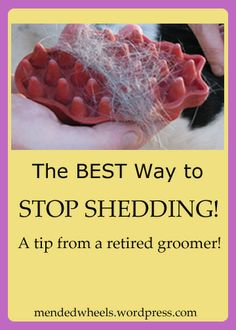 I used to be a dog groomer!  This one simple tool will tremendously help stop shedding in your house.  It's so easy even the kids can safely help!