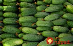 Cucumbers are melons and they are from the same family where watermelons come from. You can actually see the resemblance of cucumbers and watermelons through Healthy Dishes, Healthy Salads, Healthy Foods, Health Diet, Health And Nutrition, Vegetable Drawing, Cucumber Canning, Sassy Water, Summer House Garden