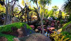 Every time something brand new opens at a Disney park, swarms of people come gushing in to see the latest and greatest. This naturally creates long lines and heavy crowds. Still determined to be one of the first to travel to the moon of Pandora? No... #avatar #disneyavatarland #disneypandora