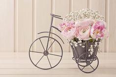 Para muchos es su medio de transporte, para otro, su deporte...pero ¿habías pensado en llevar las bicicletas a tu boda? Desarrollamos esta idea, ¡no se la pierdan!