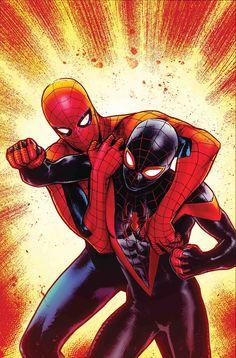 Spider-Men by Sara Pichelli Ultimate Spider Man, Spider Men, Black Spider, Spiderman Art, Amazing Spiderman, Marvel Vs, Marvel Heroes, Jack Kirby, Miles Morales Spiderman