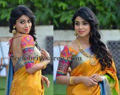 Shreya saran ad saree
