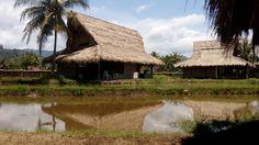 cimaja square tiny house