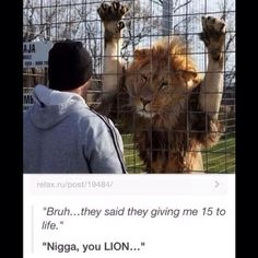 "Sorry bout the ""N"" word, but this is hIlarious!"
