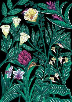 Plantes, Flors i Ocells by Cristina Daura, via Behance