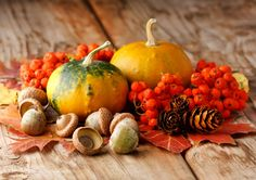 Dekoideen Herbst: Erleben Sie die herbstliche Natur und sammeln Sie Gegenstände für Ihre Herbstdeko zu Hause - Hagebutten, Blätter, Früchte, Zweige, Zapfen…