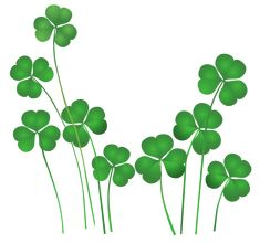 Transparent Shamrocks Decor PNG Clipart | fun stuff/animals ...