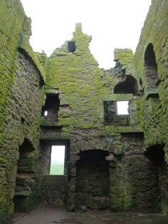 Dunnottar Castle moss Scotland