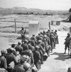 Colonne de prisonnier de l'axe en attente devant un camp de prisonnier en Afrique du nord. Ils sont nombreux dans ce cas en mai 1943 et une grande partie sera envoyé plus tard dans des camps de prisonniers aux etats unis ...