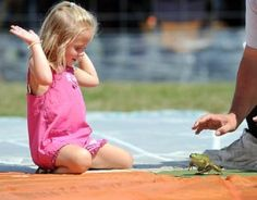 The Frog Hopping competition in Ohio.