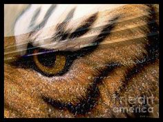 Title  Lsu - Eye Of The Tiger   Artist  Elizabeth McTaggart   Medium  Digital Art - Fractal Art And Digital Collage