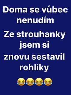 Motto, Haha, Funny Pictures, Jokes, Fanny Pics, Husky Jokes, Ha Ha, Funny Pics, Memes