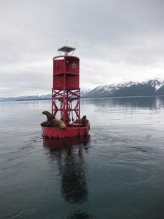 inian pass, southeast alaska
