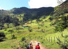 Pesquisa monitora mamíferos e incentiva a conservação da Reserva Biológica Serra dos Toledos (MG) Country Roads, Mountains, Travel, Environmental Education, Biomes, Chop Saw, Search, Nature, Viajes