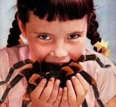 <3 #Tarantula #Spider