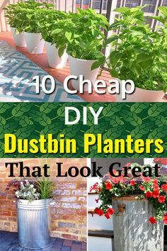 Make expensive looki Make expensive looking planters with cheap garbage bins and trash cans. This post will give you a lot of ideas! Container Flowers, Flower Planters, Flower Pots, Cheap Planters, Outdoor Planters, Garden Planter Boxes, Diy Canopy, Organic Gardening, Gardening Tips