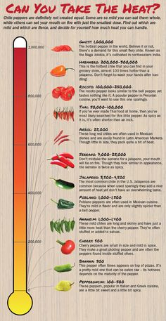Chile Pepper Heat Scale: A Guide To The Spiciest Capsicums