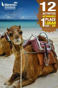 Descubre las 12 actividades que Maroma Adventures tiene para ti.  #adventure #tour #rivieramaya #camellos #playa #caribe #mexico #adrenalina #experiencia #maromaadventures #playamaroma