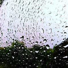Such a Rainy day :/ Rain Drops, Rainy Days, Celestial, Beautiful, Instagram Posts, Water, Plants, Outdoor, Gripe Water