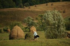 Maramures, Romania (by Vlad Dumitrescu) Romanian People, City People, Landscape, Country, Couple Photos, Oc, Photography, Kitchen, Quotes