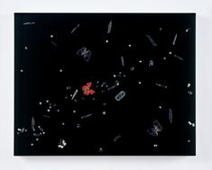 Damien Hirst  No Fear  2008  Butterflies, cubic zirconia, glass, pins, scalpel blades, razor blades and household gloss on canvas  559 x 711 mm | 22 x 28 in