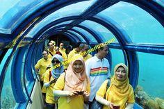 Thousand Islands Jakarta Indonesia Travel thousand islands tour. Pulau Bidadari, Pulau Pantara, Pulau Kotok, Pulau Putri, Pulau Ayer, Pulau Sepa, pulau tidung, pulau macan, Pulau Pelangi, Pulau Pari, Pulau Bira, Pulau Genteng, Pulau Harapan. telp :+62815977449… http://kepulauan-seribu.com/pulau-putri