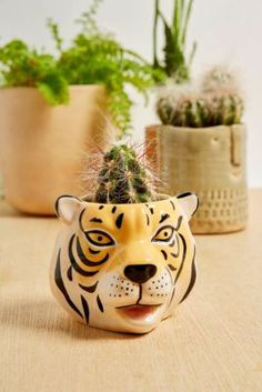 Check out Mini Tiger Head Plant Pot from Urban Outfitters Tiger Design, Urban Outfitters, Succulent Pots, Planter Pots, Tiger Head, Decorative Cushions, Earthenware, Potted Plants, House Plants