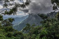 """The Usambara effect was named after the Usambara Mountains in Northeastern Tanzania. """"Western Usambara Mountains, near Lushoto"""" by David Ashby is licensed under CC By 2.0"""