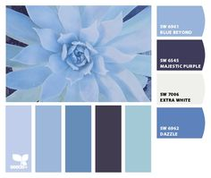 "From 7.19.12 ""Succulent blues"" Design Seeds to paint colors from Chip It! by Sherwin-Williams"