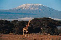 places i'd like to visit   Mount Kilimanjaro, Tanzania   Places I'd like to visit
