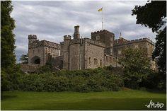 Powderham Castle by Bill  M, via Flickr