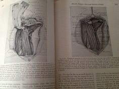 Textbook of Surgery c. 1956 by BlackSheepAntiquesVA on Etsy, $25.00