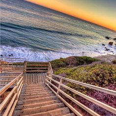 Step into the Pacific!
