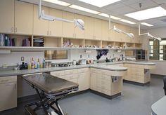 2011 Hospital Design Competition photos: Treatment areas - Hospital Design