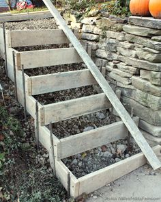 stairs made of ladder Cement Steps, Concrete Walkway, Concrete Stairs, Backyard Projects, Outdoor Projects, Garden Projects, Garden Stairs, Terrace Garden, Diy Garden