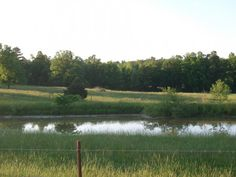 Beautiful 10 acre lot with good solid pond in Glencoe, AR.