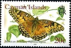 Stamp: Mexican Fritillary (Euptoieta hegesia) (Cayman Islands) (Butterflies) Mi:KY 1010,Sn:KY 940