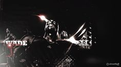 Dwyane Wade AKA: Flash, D. Wade