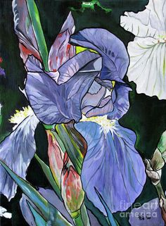 Purple Iris Painting Flower Fine Art Irises Painting by Fei Liu - Purple Iris