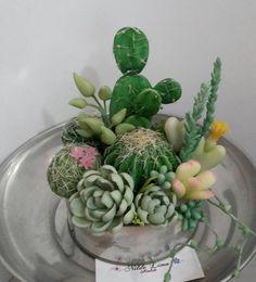 """Képtalálat a következőre: """"suculentas y cactus en porc.fria"""""""