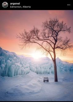 Winter Szenen, The Road Not Taken, Winter Wonder, Beautiful Places To Travel, Best Funny Pictures, Nature, Beautiful Pictures, Photo And Video, Photography