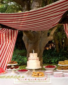 Picnic-inspired Backyard Buffet A simple dessert buffet. Fabric draped over tree branches or wood poles will keep the sun away. Wedding Rehearsal, Rehearsal Dinners, Wedding Reception, July Wedding, Wedding List, Wedding 2015, Wedding Wishes, Wedding Planner, Martha Stewart Weddings