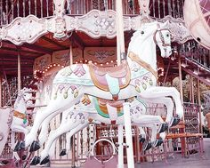Paris Carousel Merry Go Round Horses Print by Kathy Fornal  Title: Paris Carousel Merry Go Round Horses  Sizes: 5x7 8x10 {choose print size from menu