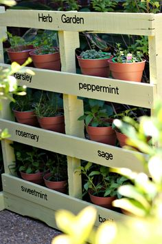 Spruce up your garden with these cheap and easy DIY garden ideas. From DIY planters to container gardening ideas, there are plenty of garden projects on a budget to choose from. Herb Garden Pallet, Vegetable Garden, Pallet Gardening, Herbs Garden, Herb Gardening, Organic Gardening, Pallet Planters, Diy Herb Garden, Pallet Allotment Ideas