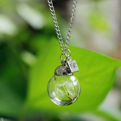 Glass Bead Bottle Natural Dandelion Make A Wish Long Necklace