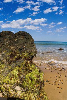 Seaweed Covered Boulder~Clayhead Beach~Block Island,RI~Digital Photography by Todd Breitling
