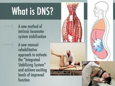 Dynamic Neuromuscular Stabilization or (DNS) looks at:  breaking down how we developed our movement patterns and then strives to fixing the movement patterns to resolve postural issues in adults.  Learn more at http://www.bnchiro.com/dynamic-neuromuscular-stabilization/