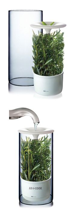 Fresh herb keeper // stores herbs, keeping fresh + delicious for up to 2 weeks! #product_design